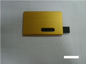 Customized Logo Metall Material Mini Credit Card USB Flash (OM-P503) pictures & photos