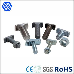 Custom Made China Manuacturer Steel Zinc Plated T Head Bolt pictures & photos