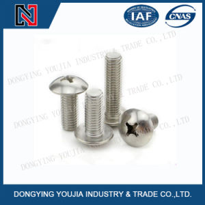 Ansib18.6.3t Stainless Steel Cross Recessed Round Head Screw pictures & photos