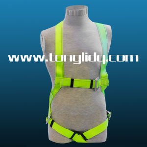 Reflective Safety Belts