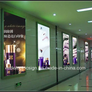Super Hot Slim LED Light Box for Metro and Hotels pictures & photos