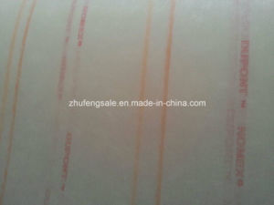 Insulation Nomex Composited Paper (6640) pictures & photos