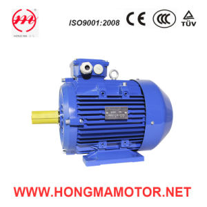 IEC Standard Three Phase Double Speed AC Motor (225S--8P/4P-22/28KW) pictures & photos
