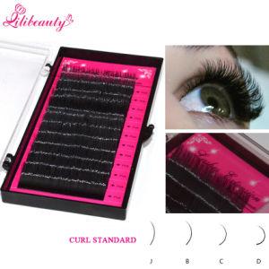 High Quality Individual Eyelash Extensions False Eyelashes pictures & photos