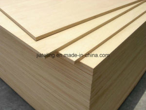 Raw/Nude MDF Board for Door pictures & photos