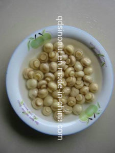 Canned Champignons Whole in Brine with Nice Size, Colour, Taste (HACCP, ISO, HALAL, KOSHER, BRC, FDA) pictures & photos