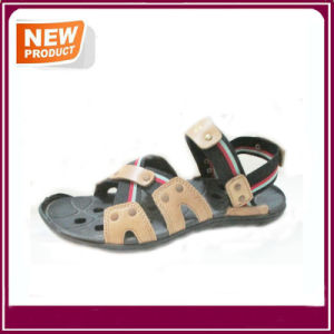 Men′s Sandal Summer Beach Shoes Wholesale pictures & photos