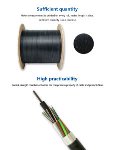GYTA 96 Core Optical Fiber Cable for Telecommunication pictures & photos