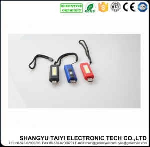 Keychain Flashlight with USB LED COB Work Light pictures & photos