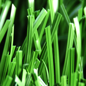 Landscaping Monofilament Garden Artificial Grass