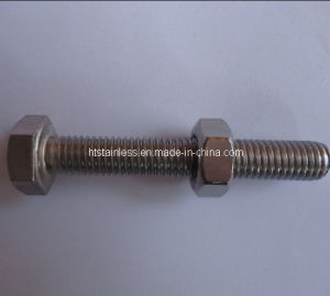 Stainless Steel Bolt and Nut pictures & photos