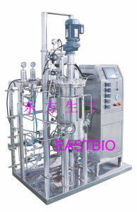 Automatic Stainless Steel Fermentor pictures & photos