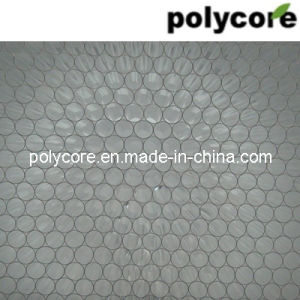 Transparent Honeycomb PC8.0 pictures & photos