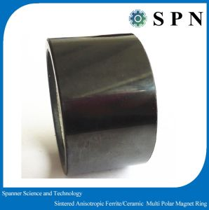Hard Ferrite/Permanet Magnet Motor Rings for Industry Surport pictures & photos