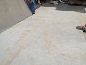 Radiate Pine Plywood for Box or Package 2.7mm-18mm pictures & photos