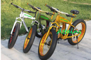 Fat Tire Mountain Electric Bicycle with 500W Motor Ebike pictures & photos