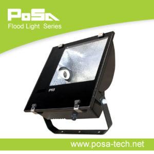Flood Light, Spot Light (PS-FL013)