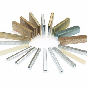 Galvanized Snw Series Staples for Roofing, Packaging and Building pictures & photos