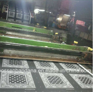 China Factory Produce Custom Reactive Print Cotton Black Paisley Bandanna pictures & photos