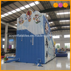 North Pole Polar Bears Inflatable Water Slide with Pool (AQ01390-1) pictures & photos