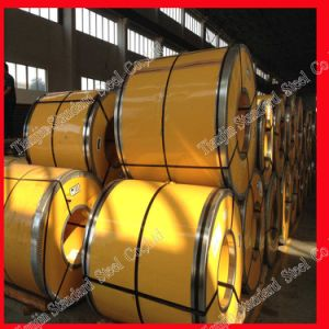 Stainless Steel Coil / Roll (304 316L 321 310S) pictures & photos