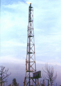 Hot Sale Flare Tower by High Quility Steel Products pictures & photos