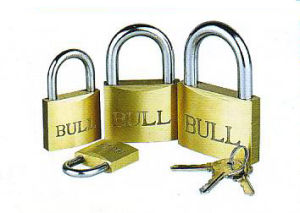 Middle Type Brass Padlock, Furniture Lock pictures & photos
