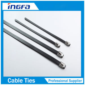 Full Epoxy Sprayed Stainless Steel Metal Cable Ties Black for Outdoor pictures & photos