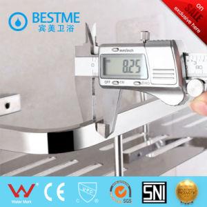Chrome 304 Stainless Steel Bathroom Shelf (BG-H101) pictures & photos