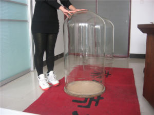 Big Diameter Clear Glass Bell Jar Bell Cover pictures & photos