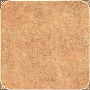 1% Absorption Porcelain Tile in Rustic Floor Tile (6819D) pictures & photos