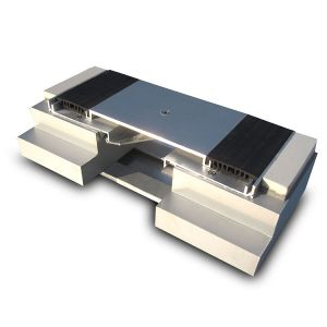 Architectural Aluminum Expansion Joint Cover Plate with Dual Durometer Seal pictures & photos