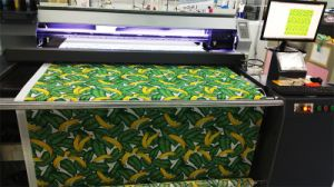 Fd1688 Direct Printing Belt Printer for Clothing Fabrics pictures & photos