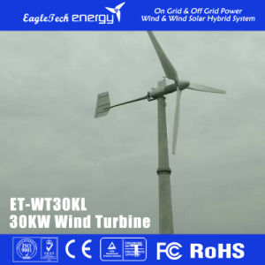 30kw Wind Turbine Generator Wind Power System Wind Mill