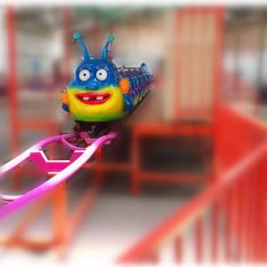 Taste Fruit Borer Kid′s Roller Coaster pictures & photos