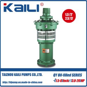 6′&8′ QY Oil-Filled Submersible Pump Clean Water Pump(single stage) pictures & photos