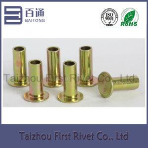 L12 6.3X19.05mm Flat Head Semi Tubular Steel Brake Lining Rivet pictures & photos