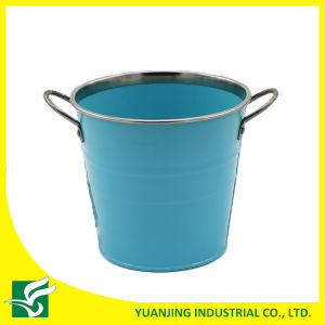 High Quality Metal Bucket with Chrome Decor in Color for Home and Garden