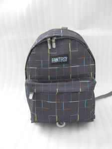 Grey Travel Sports School Outdoor Bags Computer Backpack pictures & photos