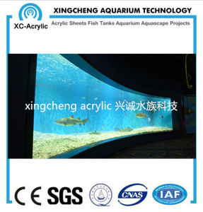 Acrylic Material Glass Sheet Aquarium Project Price pictures & photos