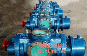 Screw Pump/Double Screw Pump/Twin Screw Pump/Fuel Oil Pump/2lb2-400-J/400m3/Marine Equipment pictures & photos