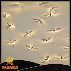 Modern Decorative Metal Wall Lights (KA8091W) pictures & photos