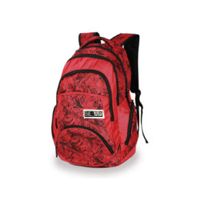Custom Backpacks for Teenage and Women (LJ-131030) pictures & photos