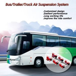 Leaf Spring Air Suspension Systems for Autocar pictures & photos