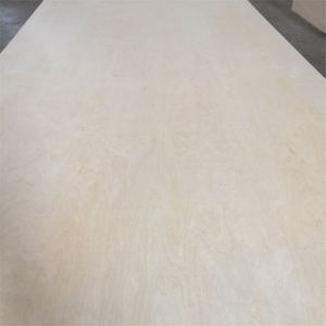 C/D Grade 1220*2440*18mm White Birch Plywood for Decoration pictures & photos