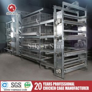 Poultry Farm Machine Chicken Layer Cage with Automatic Feeding System pictures & photos