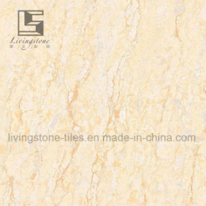 Natural Jade Series Polished Floor Tile pictures & photos