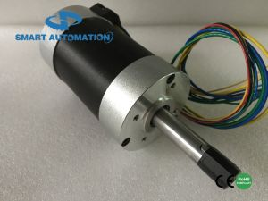 57hbl 36 Volt DC Brushless Motor, Upto 200W pictures & photos