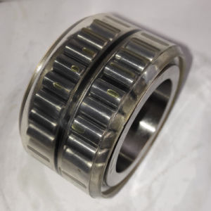 Cylindrical Roller Bearing Double Row Rnn32X46.6X28V for Brevini pictures & photos