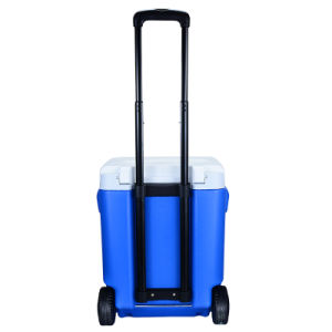 30L DC12V Refrigerator with Telescopic Handle and Wheels pictures & photos